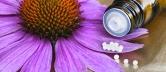 Geschwächtes Abwehrsystem homöopathisch behandeln